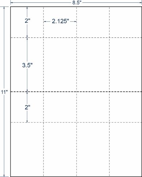 "Compulabel 411210 2-1/8"" x 5-1/2"" Raffle Ticket Refill 100 Sheets"
